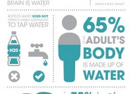 How much do you know about water - infographic
