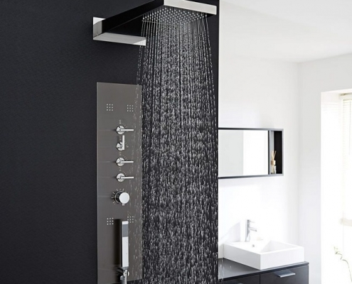 black shower tower