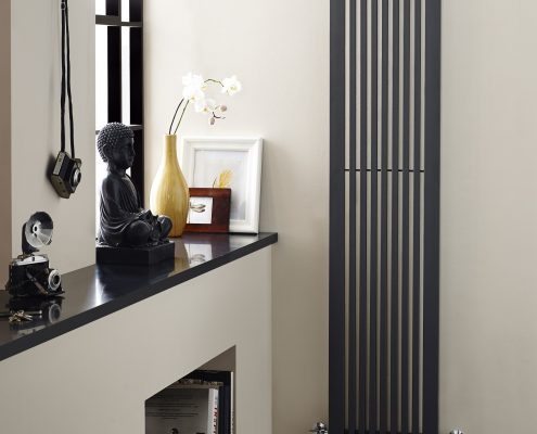anthracite vertical radiator