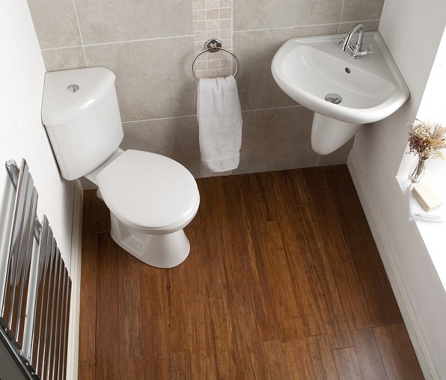 Corner-Cloakroom with toilet, towel ring, and corner basin