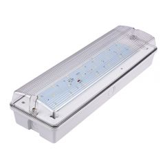 Biard LED Bulk Head Emergency Light - Maintained or Non Maintained