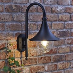 Biard Florence Swan Neck Outdoor Wall Light