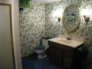bathroom wallpaper fail